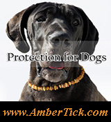 Tick and Flea Protection Pet Collars